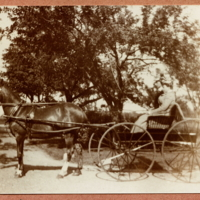 Ted [Theodore Shaw Jr.] and Bessie in horse drawn carriage