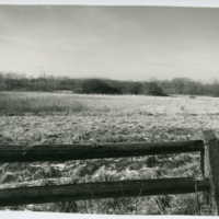 Section of Howard Van Doren Shaw's split-rail fence and the field beyond it